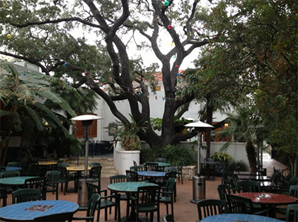 Oak Tree in restaurant setting